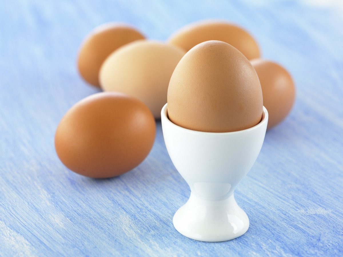 EggCup2