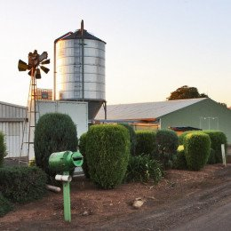 Front of farm